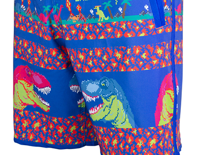 Art work for Tshotsh's boardshorts 2015
