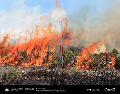Cape Breton Highlands National Park Fire Info. Panels