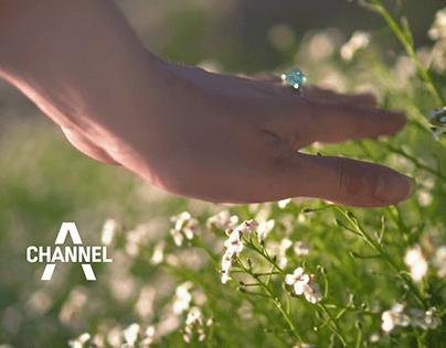 시즌ID 브랜딩 영상 채널A