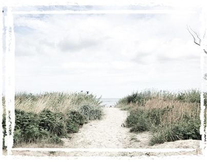 Dunes ébouriffées en Mer du Nord ...