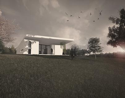 Villa S/Visualization