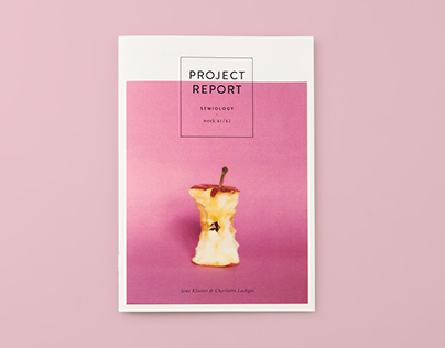 Project report – editorial