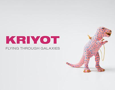 Kriyot Toys   Design Management Course   NID