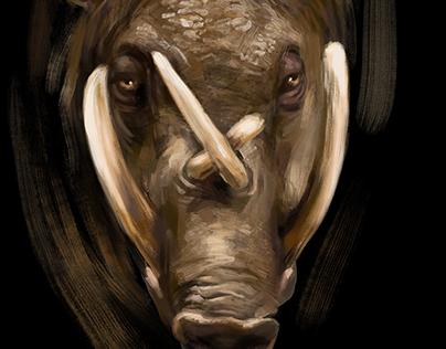 Fauna Portraits