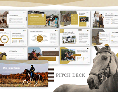 DM Equestrian