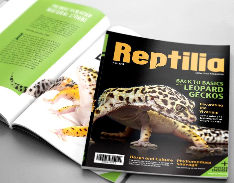 Reptilia Magazine Class Rebrand