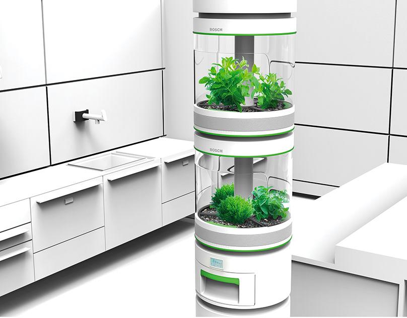 устройство для выращивания