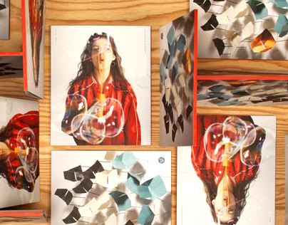 2012 Blu Dot Catalog