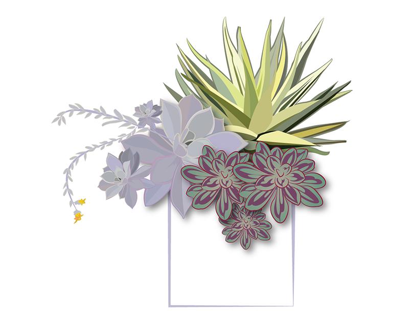 Sample of Illustration Styles