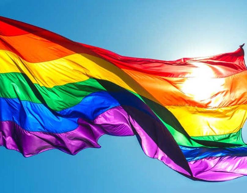 Gay Pride Lgbt Subtle Bisexual Bi Rainbow Stripe Women's Hoodie