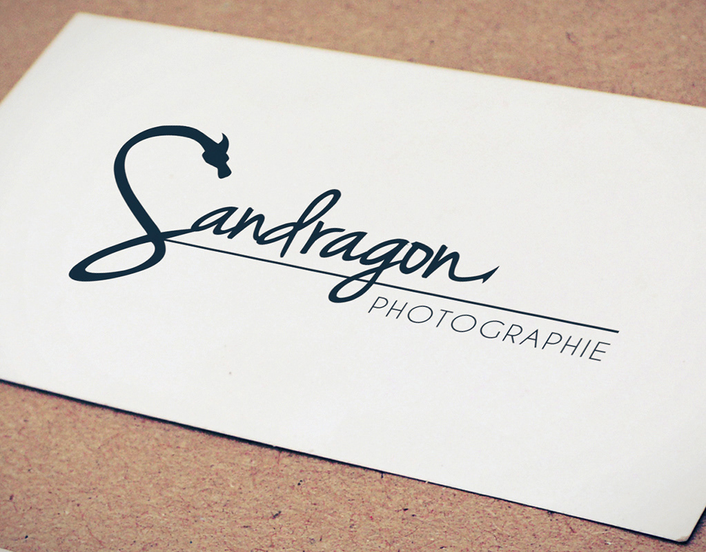 logo, identité, photographie, photographe, cartes de visite, graphiste, lozère, cévennes, julie mercey, sandragon