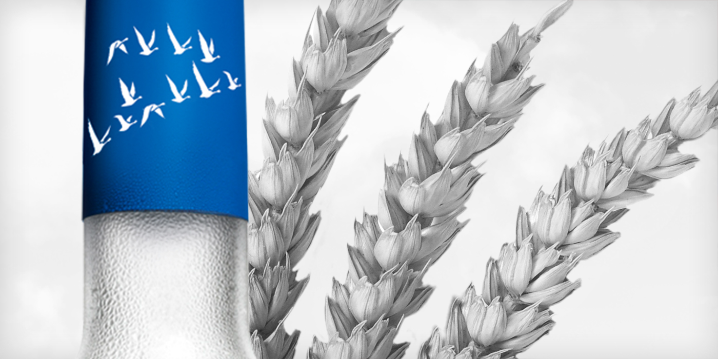 Grey Goose Vodka Digital Redesign