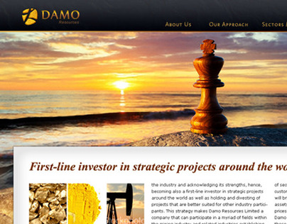 DAMO CIS / Website