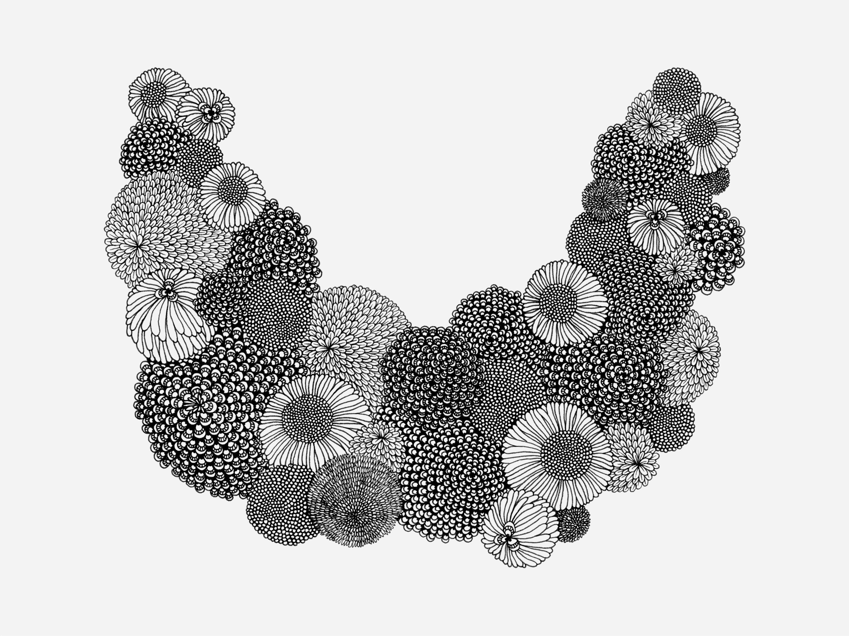 Flora Illustrations