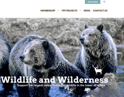 Yellowstone Park Foundation | forthepark.org