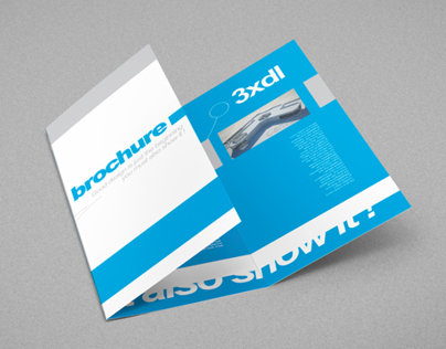 Tri-Fold DL Brochure Mock-up (no hands version)