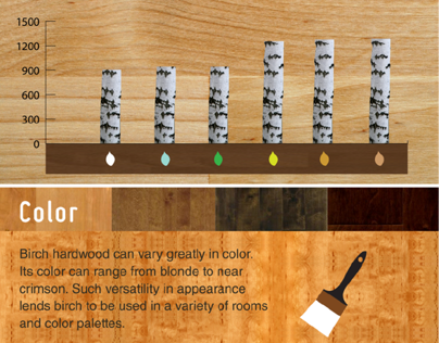 Prosource birch hardwood Infographic