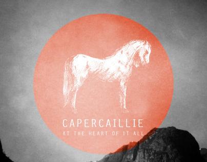 Capercaillie album cover concept