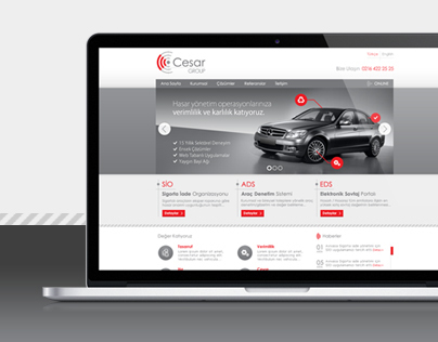 Cesar Website Design 1