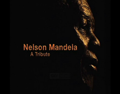 Nelson Mandela Titles