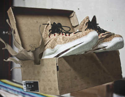 #WhatTheLevitation - Nike Lebron X Cork