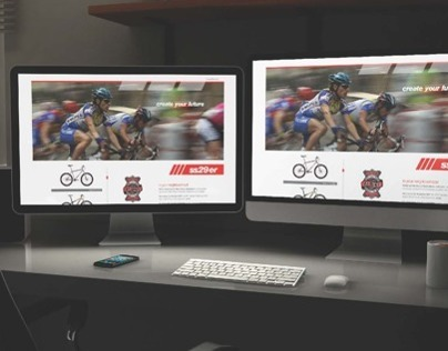 SS29er Website Design