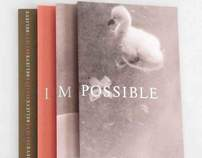 Believe I Am Possible