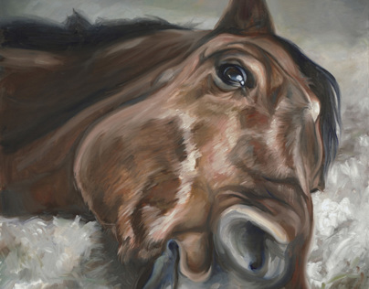 Equine~Heart Paintings