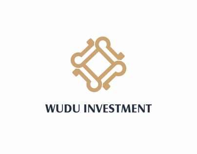 WUDU  INVESTMENT   /   experimental