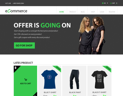eCommerce  business templet