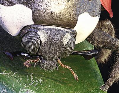 Ladybug Journey - Visual 1 - Full CGi