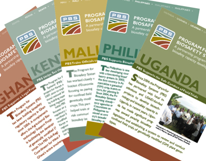 Newsletters and Brochures