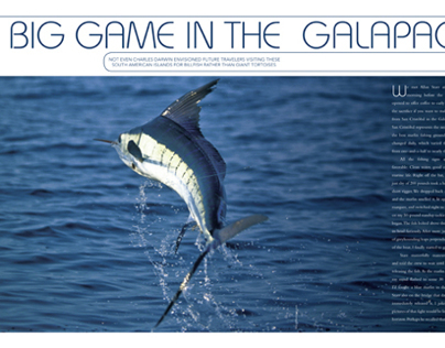 Destination Fish, Galapagos feature, Fall 2007