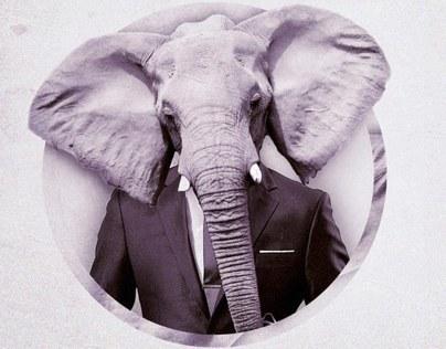 Elephant Flyers