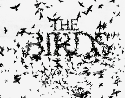 The Play The Birds Poster