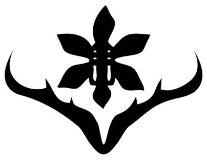 Orgel's Orchids & Carnivorous Plants