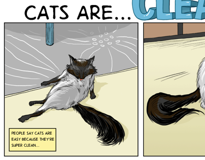 Cats are Clean