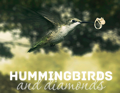 Hummingbirds and Diamonds