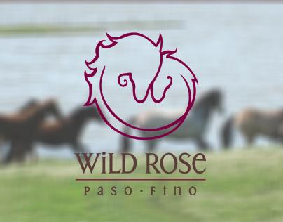 Wild Rose Paso Fino