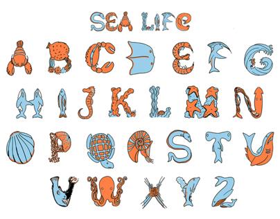 Hand Drawn Alphabet