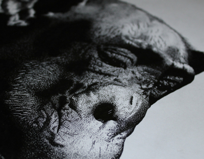 Stipple of an Ape