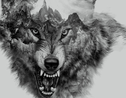 Wolf Collage for t-shirt printing