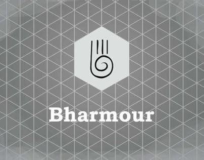 Bharmour: Craft Documentation