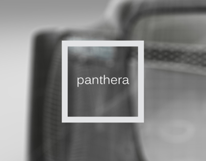 Panthera: A Design Journey