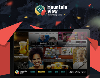 Mountainview agency website