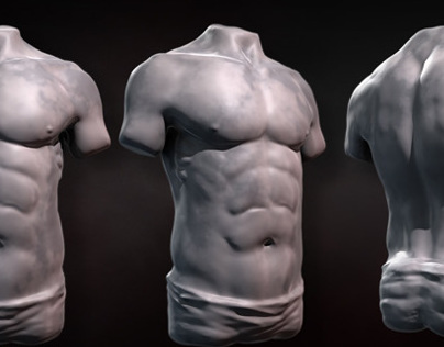 Sculpting Human Torsos in ZBrush