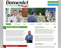 Domenici 2010 Logo & Web Site