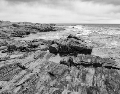 Maine's Black and White Coast