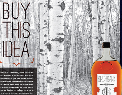 Buy This Idea - Company Magazine Spread