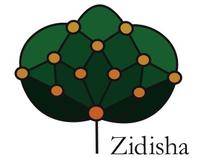 Zidisha Identity